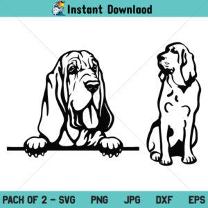 Bloodhound SVG, Bloodhound Dog SVG, Bloodhound Peeking SVG, PNG, DXF, Cricut, Cut File, Clipart, Silhouette