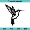 Hummingbird SVG, Hummingbird SVG File, Hummingbird SVG Design, Bird SVG, Hummingbird PNG, Hummingbird Cricut, Hummingbird Cut File, Hummingbird Clipart, Hummingbird Silhouette, Hummingbird Vector