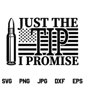 Just the Tip I Promise US Flag SVG, Just the Tip SVG, I Promise SVG, American Flag SVG, Just the Tip Flag SVG, PNG, DXF, Cricut, Cut File
